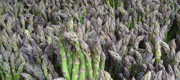 can rabbits eat asparagus ends